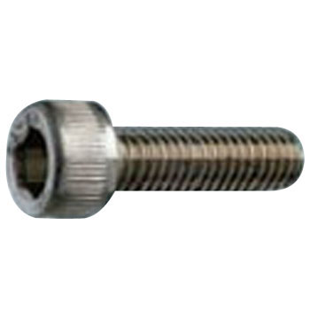 Hexagon Socket Left Screw, Stainless Steel