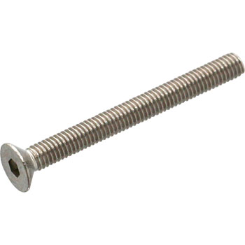 Hex Socket Head Screw, Stainless Steel
