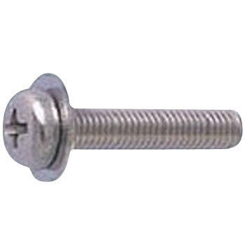 Pan Head Screw