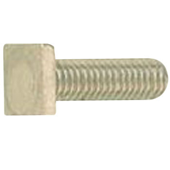 Square Head Bolt, Stainless Steel