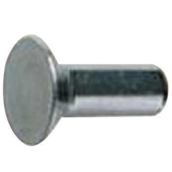 Countersunk Head Rivets,Stainless Steel,Packed Product