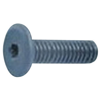Low Head Screw