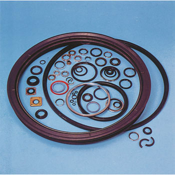 Oil Seal, MG-Type