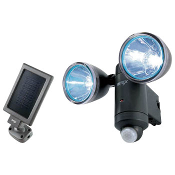 1Wx2 LED Solar Light