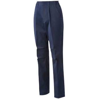 women's pants (for the autumn and winter )