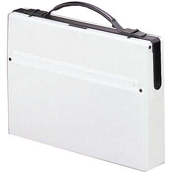 Document Carry Cases