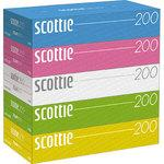 Scotty tissue color assorted pop box