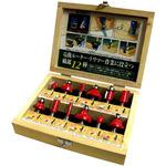 Cemented Carbide Blade Router Bit Set