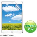 LCD protective anti-fingerprint glossy film for iPadmini