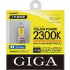 Halogen bulb yellow power H16