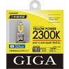 Halogen bulb yellow power HB4 / 3