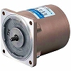 ASTERO Induction Motor