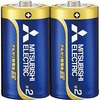 Alkaline batteries EXD series single-2 form