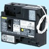 Earth Leakage Circuit Breaker, OC, 30AF to 60AF