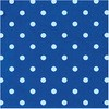 Poly wrapping cloth (polka)