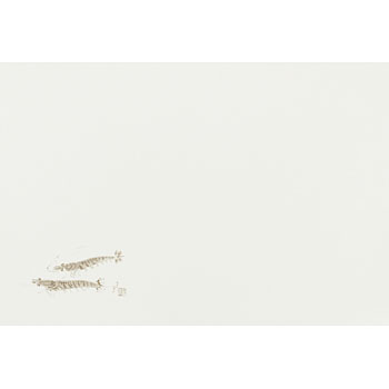 E-type table mat (quality) fish series