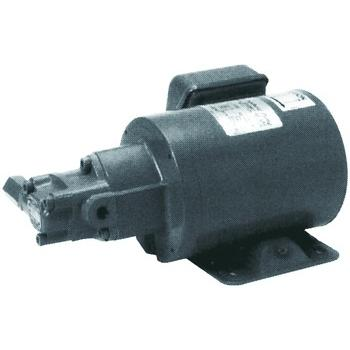 Motor trochoid pump