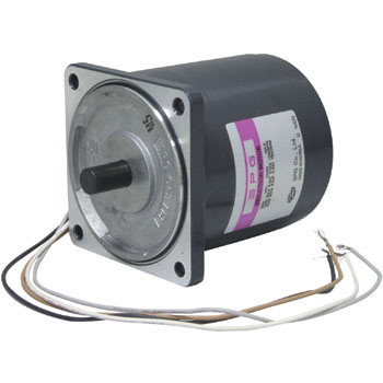 Induction motor 60W
