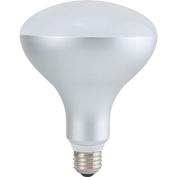 Lev lamp type LED bulb