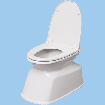 Miraculous Renovation Toilet Machost Co Dining Chair Design Ideas Machostcouk