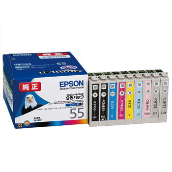 Ink Cartridge EPSON IC55, Genuine