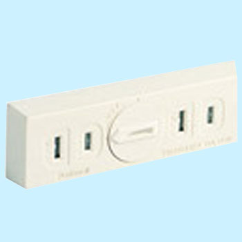 Double outlet plug type 2