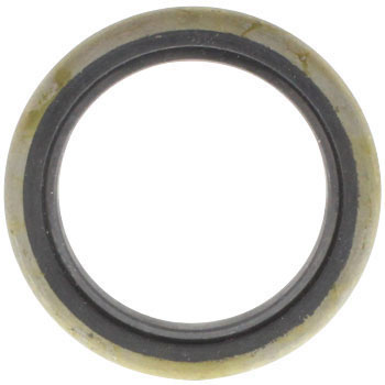Oil Seal DS