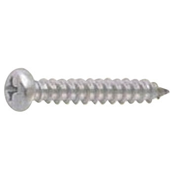 Phillips Tapping Screw