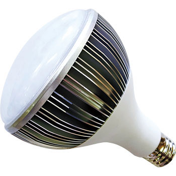 LED Floodlight Replacement Bulb
