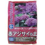 Soil of red hydrangea