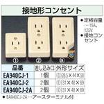 Earthing type outlet [2 mouth]