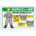 Safety belt-related labeling