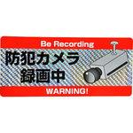 Security cameras sticker
