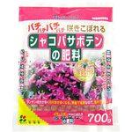 Fertilizer of Schlumbergera