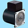 Induction motor