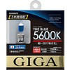 Halogen bulb The Blue HB4 / 3