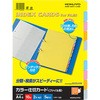 Color Divider Card, Heading for The 10 Piled Files KOKUYO